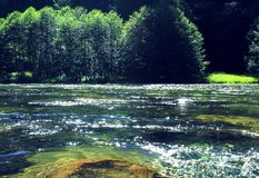 Lewis river falls landscape photo royalty free stock photography