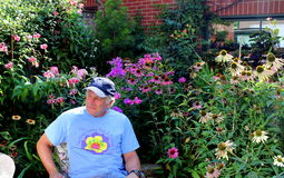 Lewis van Laury in zijn toekennings winnende tuin Royalty-vrije Stock Fotografie