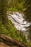 Lewis Watrefall w Yellowstone parku narodowym zdjęcie stock