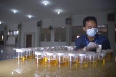 LEY DURA DE LA DROGA DE INDONESIA Foto de archivo libre de regalías