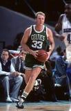 Leyenda de los Celtics de Larry Bird Boston Imágenes de archivo libres de regalías
