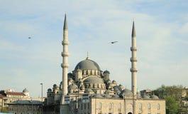 leymaniye μουσουλμανικό τέμενο&si Στοκ εικόνα με δικαίωμα ελεύθερης χρήσης