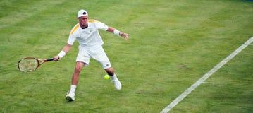 Leyton Hewitt Australian Tennis player Royalty Free Stock Photo