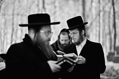 Orthodox jewish men prays Stock Image