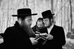 Lezajsk, Polonia - circa marzo de 2011: El hombre judío ortodoxo ruega adentro Imagen de archivo