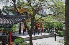 Lezione di ballo in un parco cinese fotografie stock