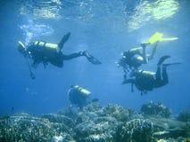 Lezione di gruppo dell'operatore subacqueo di scuba fotografia stock