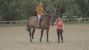 Lezioni di equitazione video d archivio