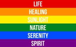 LGBT Pride Flag & x28; Lesbisk kvinna, bög, bisexuell person & Transgender& x29; Med specifik betydelse till varje av färgerna stock illustrationer