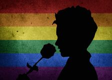 LGBT valentines day concept, a silhouette holding and smelling a rose, on a stone wall with a rainbow flag pattern stock photography