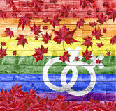 LGBT woman symbol and red falling leaves isolated on LGBT flag background Stock Photos
