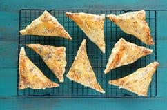 Lägenhet som är lekmanna- av ett travy mycket med lagade mat triangulära Burekas Arkivbilder