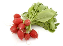légumes de 1 plan rapproché Image stock