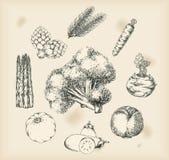 Légumes dessinant les objets d'isolement Photos stock