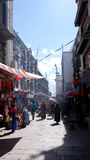 Lhasa Bhakor Obraz Stock