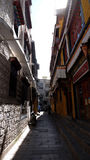 Lhasa Bhakor Fotografia Stock