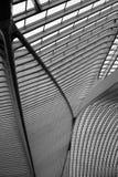 Liège-Guillemins火车站屋顶  免版税库存照片