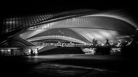 Liège - Guillemins station Royaltyfria Bilder