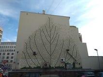 Liścia malowidło ścienne na ścianie w Belgrade, Serbia obrazy royalty free