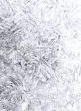 Liście paskujący na białym abstrakcjonistycznym tle royalty ilustracja