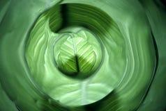 liść abstrakcyjne Fotografia Royalty Free