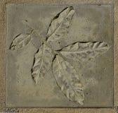 liść betonowy znaczek Obrazy Royalty Free