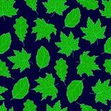 Liść Bezszwowa zieleń Obraz Royalty Free