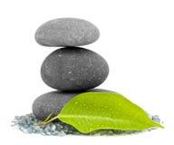 liść brogujący kamienie Zdjęcie Stock