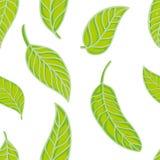 liść deseniują bezszwowego Zdjęcie Royalty Free