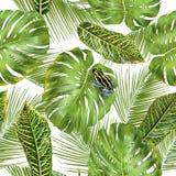 liść deseniują tropikalnego royalty ilustracja