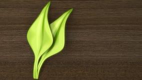 liść drewno nowy nawierzchniowy Obraz Stock