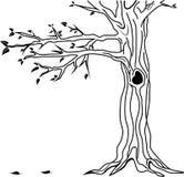 liść drzewa wektor Obrazy Royalty Free