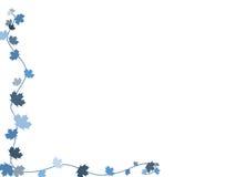 liść gałęziasty meaple Zdjęcie Stock