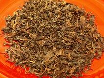 liść herbata Fotografia Royalty Free