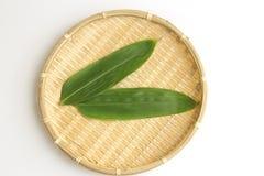 Liść Japoński dziki imbir na bambusowym koszu Zdjęcie Royalty Free