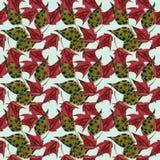 Liść klonowy akwareli bezszwowy wzór Zdjęcie Royalty Free