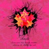 Liść klonowy z atramentu wzorem dla jesień projekta Obrazy Royalty Free