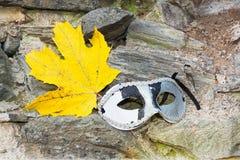 Liść Klonowy z oko maską Fotografia Stock