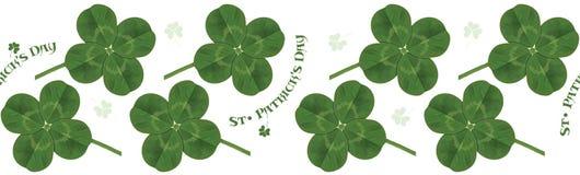 liść koniczyna Irlandzki symbol dla uczty St Patrick horyzontalny deseniowy bezszwowy royalty ilustracja
