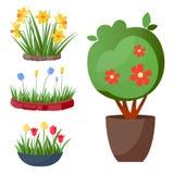 Liść kreskówki zieleni lata liścia rośliny drzewny wektorowy tło Obraz Stock