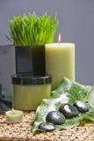 liść lawendowy matte kołysa zdroju studio Fotografia Royalty Free