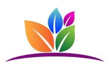 liść logo Zdjęcie Stock