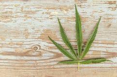 Liść marihuana na drewnie Zdjęcie Stock