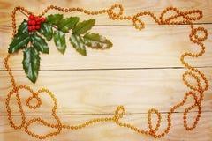 Liść ostrokrzew Zdjęcie Stock