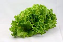 Liść sałata Świeża od ogródu Fotografia Stock