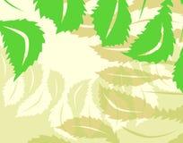 liść tło ilustracja wektor
