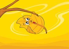 liść wiatr Zdjęcie Royalty Free