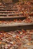 liść zakrywający spadać schody Zdjęcie Stock