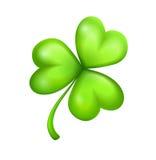 Liść zielona koniczyna ilustracji