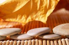 liści jesienią kamienie Obrazy Royalty Free